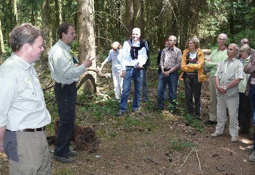 Rund 40 Wanderer erkundeten mit fachkundiger Führung den Holter Wald